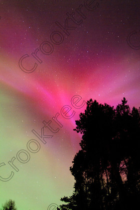 Aurora Rays & Forest SO0213720JHP 