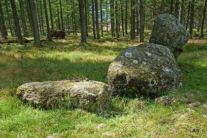 Nine Staines Stone Circle Scotland TO4139180JHP 