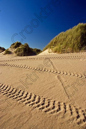 Balmedie Beach up704391jhp 