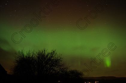 Aurora Torphins bnm1874jhp 