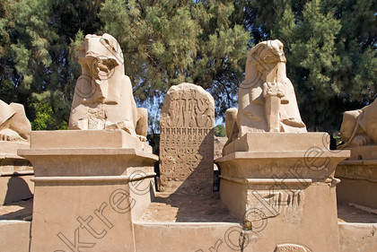 Luxor Karnak Rams Stele EG074841JHP 